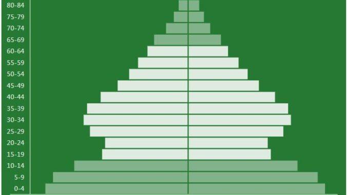 Algeria Population Pyramid