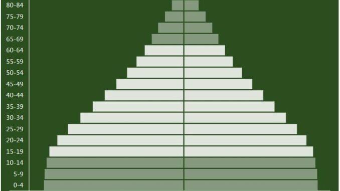 Bolivia Population Pyramid