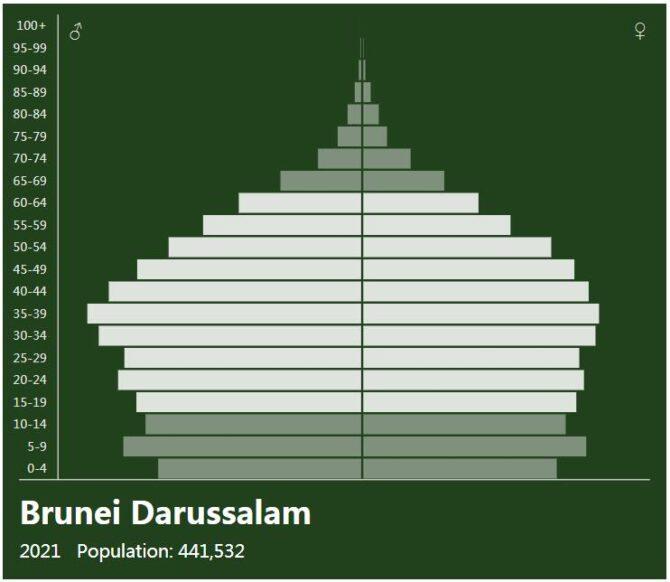 Brunei Population Pyramid