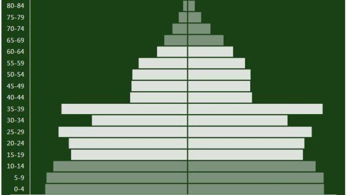 Cambodia Population Pyramid