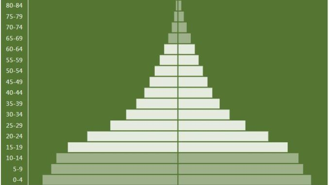 Central African Republic Population Pyramid
