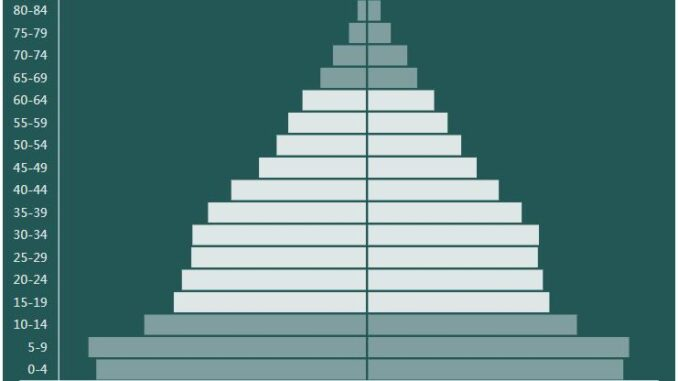 Egypt Population Pyramid