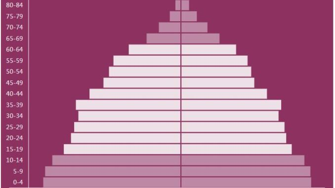 Fiji Population Pyramid