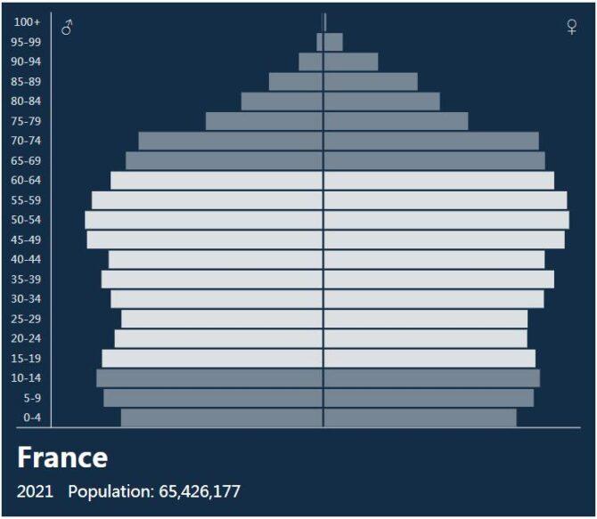 France Population Pyramid