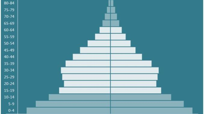 Gabon Population Pyramid