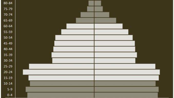 Guyana Population Pyramid