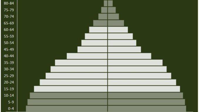 Haiti Population Pyramid