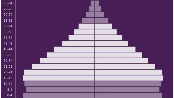Honduras Population Pyramid