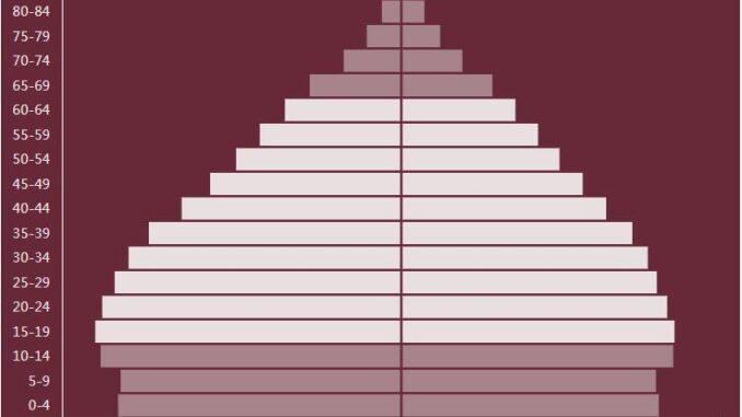 India Population Pyramid