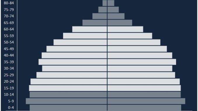 Indonesia Population Pyramid