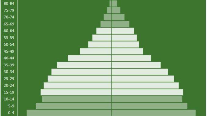 Lesotho Population Pyramid