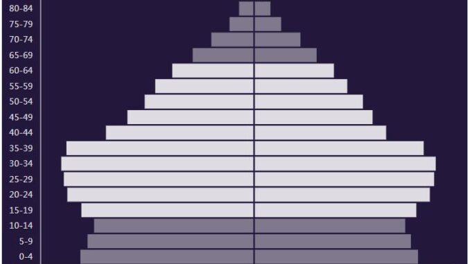 Malaysia Population Pyramid