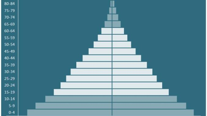 Mauritania Population Pyramid