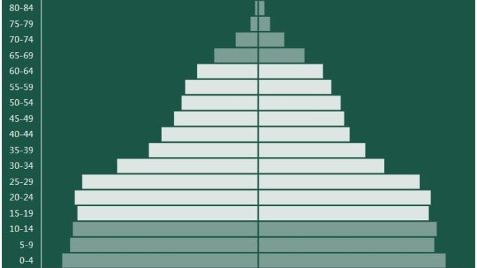 Micronesia Population Pyramid