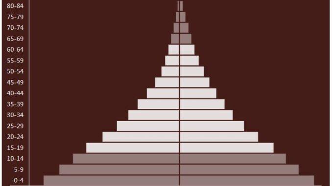 Mozambique Population Pyramid