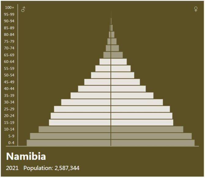 Namibia Population Pyramid