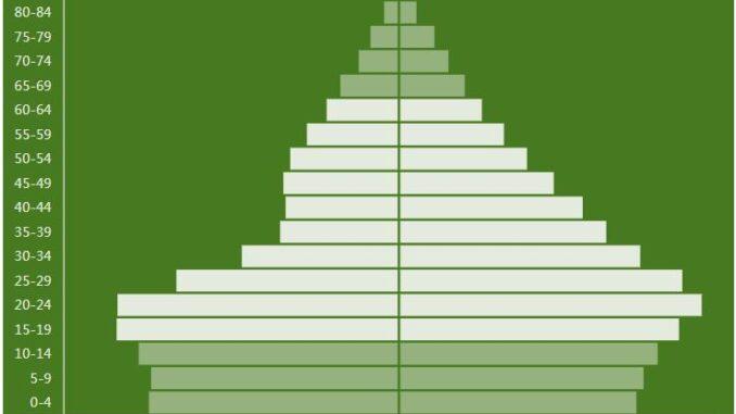 Nepal Population Pyramid