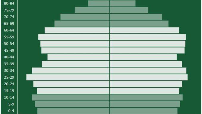 New Zealand Population Pyramid