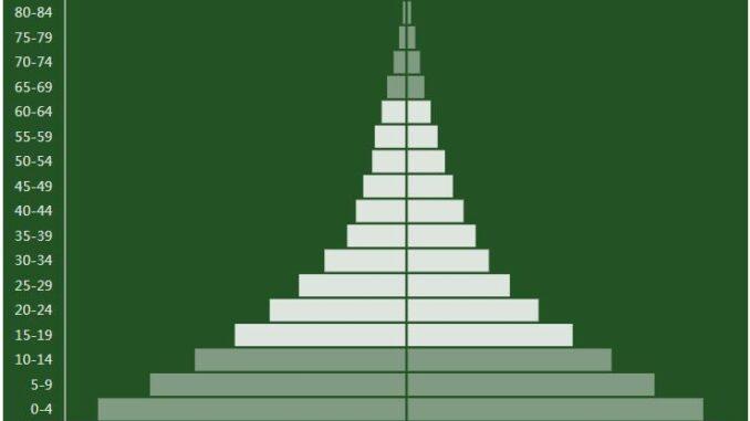 Niger Population Pyramid