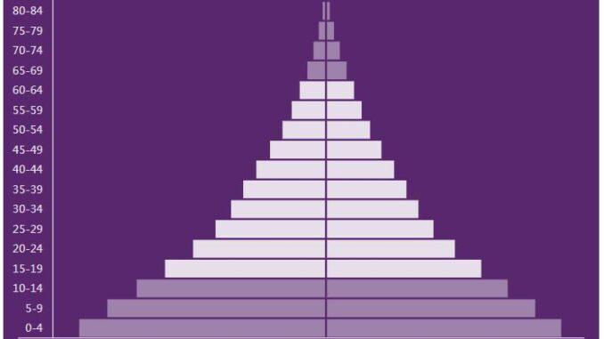 Nigeria Population Pyramid
