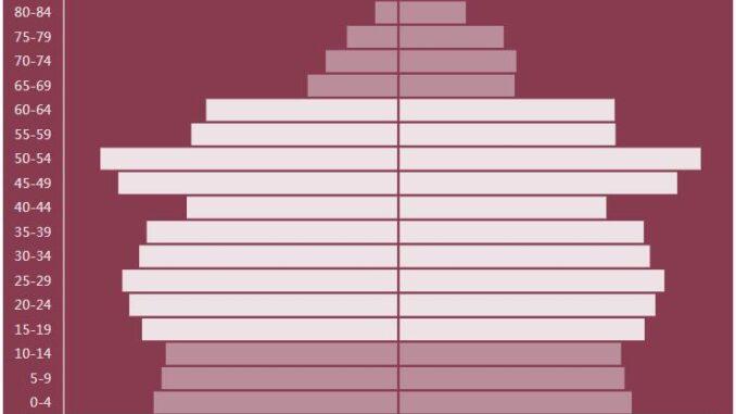 North Korea Population Pyramid