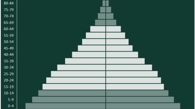 Pakistan Population Pyramid