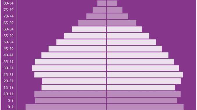 Peru Population Pyramid