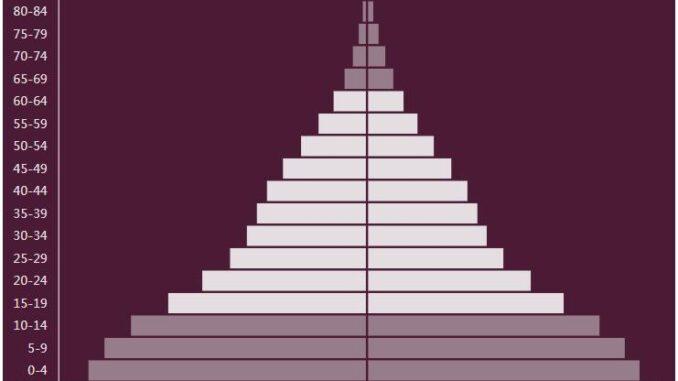 Republic Of The Congo Population Pyramid