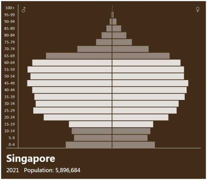Singapore Population Pyramid