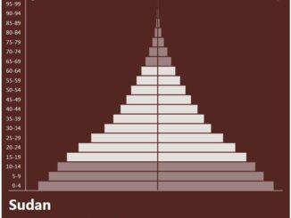 Sudan Population Pyramid