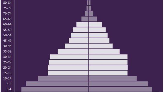 Tajikistan Population Pyramid