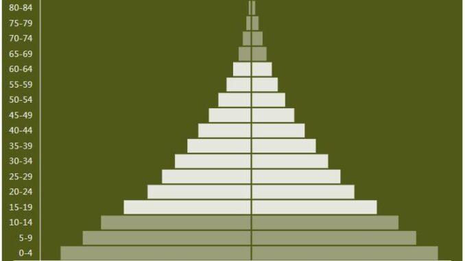 Tanzania Population Pyramid