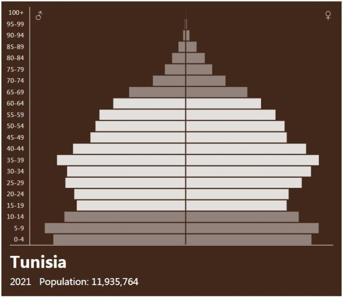Tunisia Population Pyramid