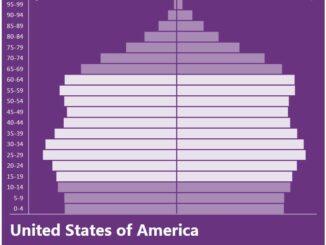 United States Population Pyramid
