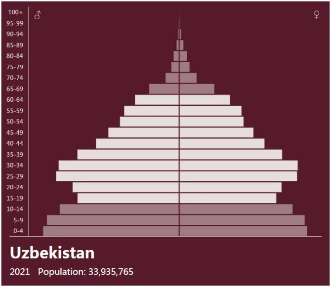Uzbekistan Population Pyramid