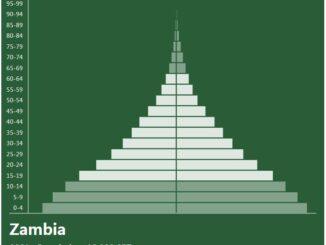Zambia Population Pyramid