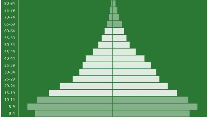 Zimbabwe Population Pyramid